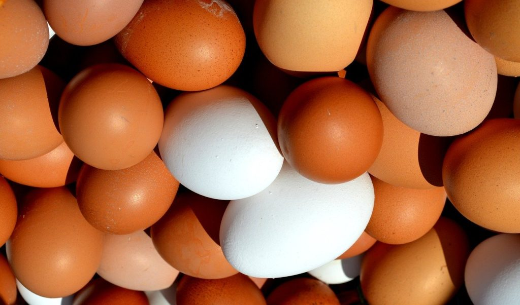 5 important facts about the eggs you probably don't know